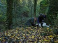 Truffle in Tuscany - Truffle Hunting Experience!