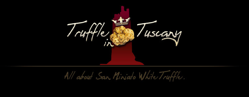 Truffle in Tuscany - Photo Gallery